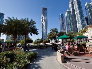 Panoramic Palm Views Luxury Apartment