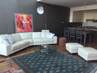 Luminous Loft , large 1 bdr Downtown, Dubaï