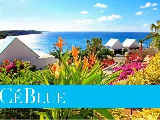 Villa CeBlue (Paradise)