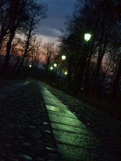 Il viale interno al parco reale, in notturna.