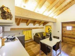 Residenza Alagna2000 - APP.6, Alagna Valsesia
