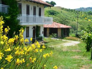 Luxury Stone Farmhouse:  Langhe-Italy, wine  area, Trezzo Tinella