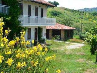 Luxury Stone Farmhouse:  Langhe-Italy, wine  area