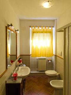 Bathroom of apartment Alba (4+1)