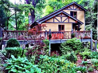 The Black Bear Lodge at Black Mountain