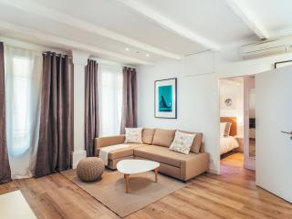 Fully renovated apartment in City Center, Nice