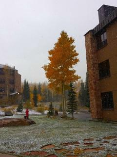 The fall is a beautiful time to visit - not many people. Dress warmly.