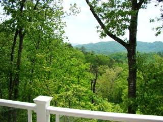 The Great Smoky Mountains are In Your Back Yard
