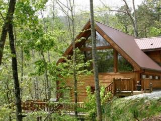 White Tail Hollow - Spacious, Romantic, and Comfortable. Wi-Fi and Outdoor Hot Tub. Rafting and Fontana Lake are Minutes Away., Bryson City
