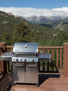 Imagine grilling your dinner & then enjoying this view while dining outside or at the kitchen table