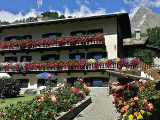 Maison di Luisa Courmayeur apartments  Negritella