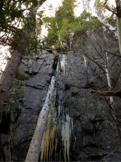 In the winter, massive icicles  adorn the bluff below the Prowhouse. (View from one of our trails)