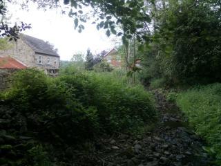 Burnhope Stream
