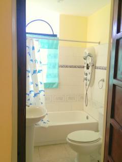 Second-floor bathroom, shower with water jets