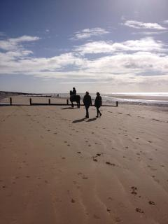 Horse Riding on Camber Beach