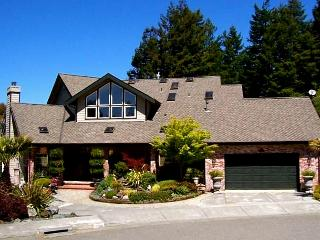 Spacious Artsy Vacation Home 1 mile from Park&Zoo, Eureka