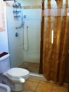 Master bathroom  with bidet, shower and toilet