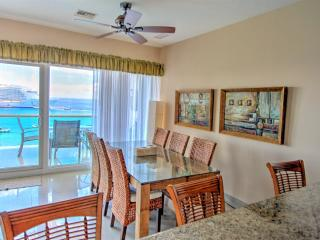 view from kitchen across dining area is also amazing