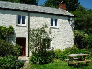 C18th Inglenook Cottage, Challacombe