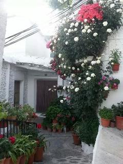 Rincones con flores