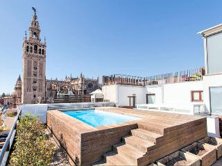 Unique Luxury Apart. Swimming pool!, Seville