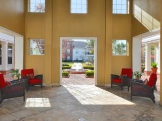 Beautiful 2BDR/2Bath condo in The Woodlands #917