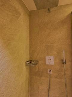 spacious, rainforest shower