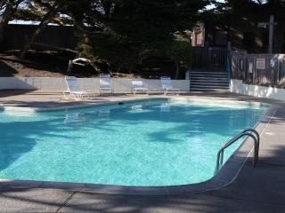 Magnificent 3BR/3BA Monterey Bay Beach House