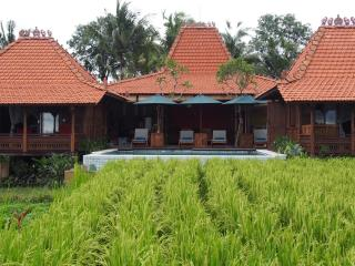 Villa view from the rice fields.