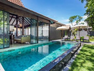 ** LUXURY 3-BEDROOM SURF VILLA **, Canggu