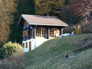 Superb location, privacy, sunny, in quiet and natural setting, panoramic views, Nendaz