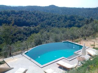 Villa Monterosoli private garden and pool secluded, Palaia