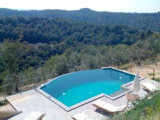 Monterosoli Villa giardino privato e piscina appartata, Palaia