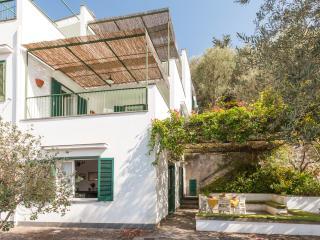 Casa Teresa,garden and terraces with sea view, Massa Lubrense