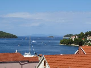 Apartment with a beautiful terrase sea view-wi fi, Vela Luka
