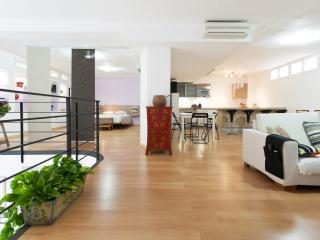 PARKING INCLUDED. LOFT IN BARRIO SANTA CRUZ.