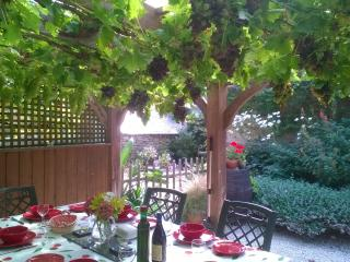 La Vigne with own heated pool and private garden, Quistinic