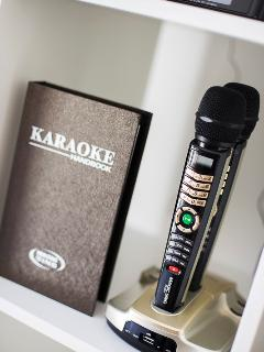 Croon Your Hearts Out at Karaoke