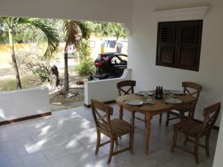Roadrunner Bonaire - Kralendijk