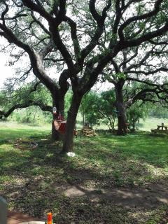 The property includes several stately old oak trees providing lots of shade.