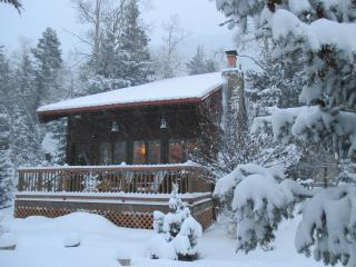 Cozy Taos Ski Valley Family Cabin