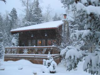 Cozy Taos Ski Valley Family Cabin