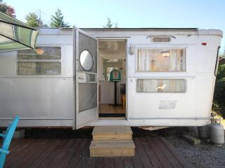 Come stay in a Cool Vintage 1955 Camper- HOT TUB!, Asheville