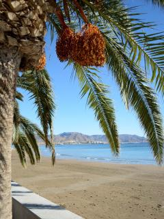 Miles of beach along the Puerto de Mazarron boardwalk - book your holiday getaway with us today!