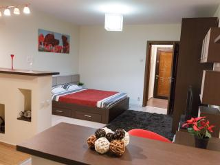 STUDIO D - CENTRAL - COMFY - WiFi - FREE PARKING!, Bukarest