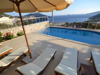 4 Bedroom Villa Teo With Airport Transfer, Kozakli