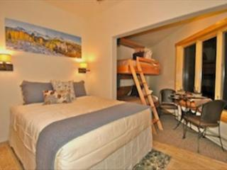 Viking Lodge 100B - Cozy Studio Condo/In Town/Pool/HotTub/Parking!, Telluride