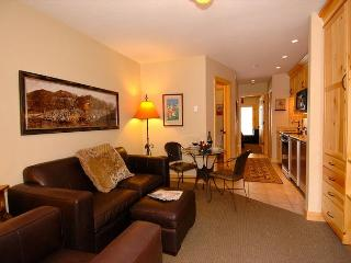 Viking Lodge #212 - pool/hot tub/parking/king bed/steps to skiing/big views!, Telluride
