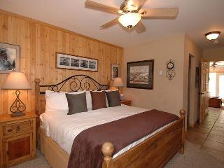 Viking Lodge 311 - River views, steps to skiing, in town, sleeps 4, Telluride