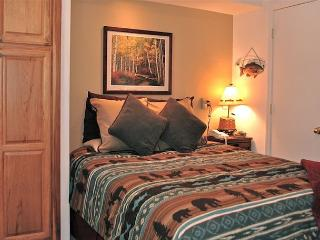 Viking Lodge 315 - In town on river/ views/ location/ pool/ hot-tub/ parking!, Telluride